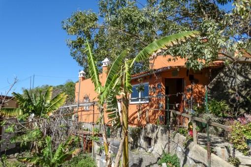 Schön renovierte Finca mit 2 Schlafzimmern, nur 200 m über dem Meer in Icod de los Vinos