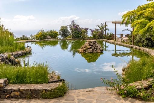 Grüner Garten mit Teich