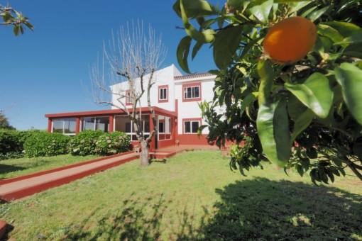 Idyllische geräumige Villa nahe Golfplatz in ruhiger Lage, El Rosario