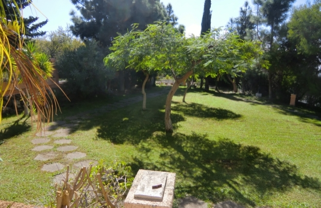 Großer und gut gepflegter Garten