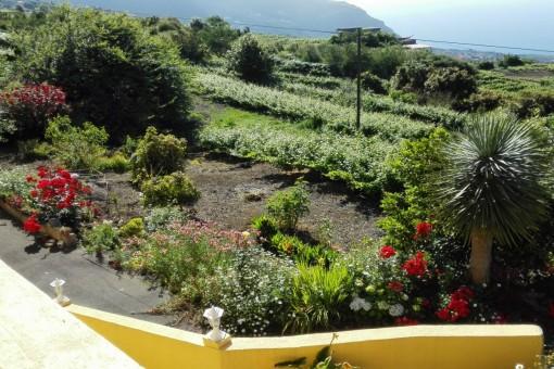Zugang zum wunderschönen Garten