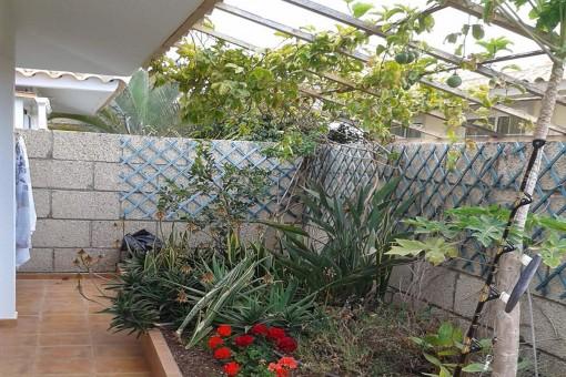 Kleiner Garten der Villa