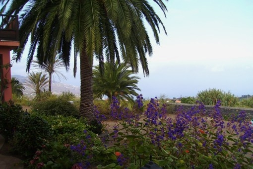 Panoramablick nach Santa Cruz und über den Atlantik