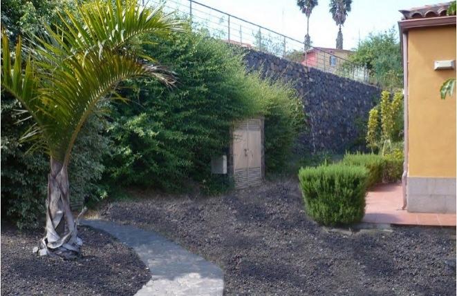 Attraktiv gestalteter Außenbereich mit Bepflanzung