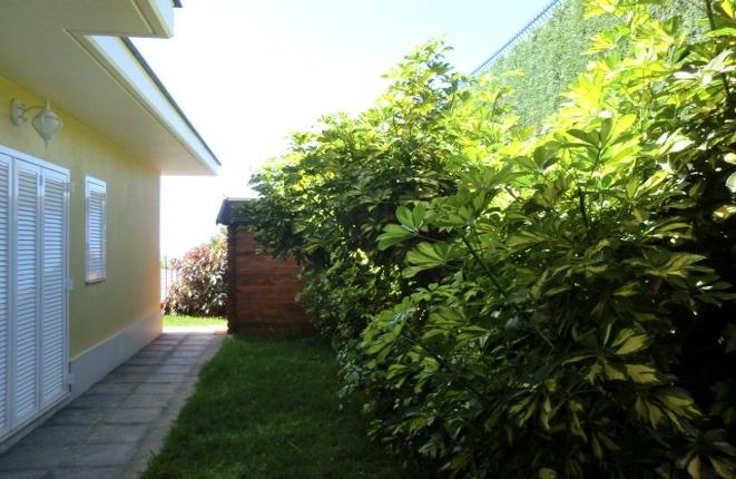 Der Garten mit einem geräumigen Abstellraum.