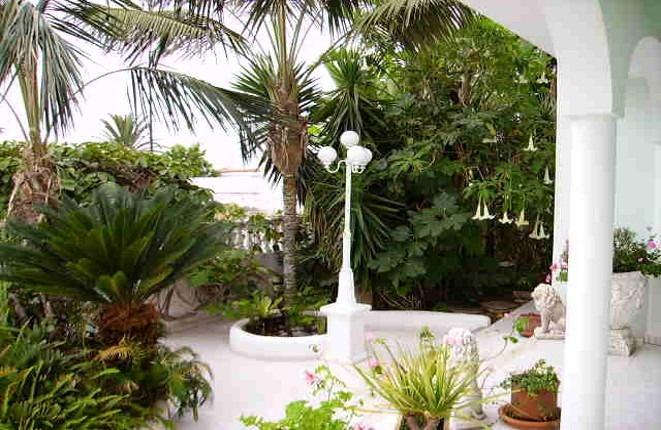 Romantisch gestalteter Garten