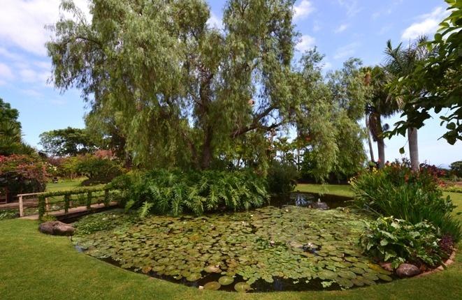 Der See in Mitte der Gärten mit Brücke und Wasserfall