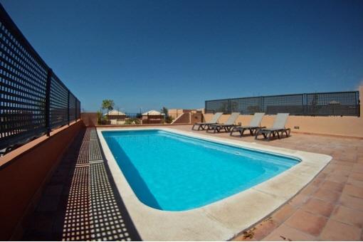 Privates Schwimmbad mit Liegestühlen