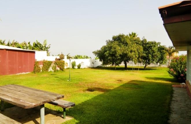 Große Gartenanlage hinter dem Haus