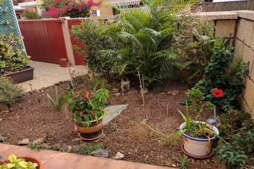 Kleiner Gartenbereich