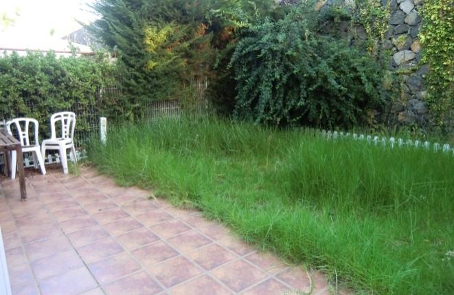 Schöner Garten mit Wegplatten