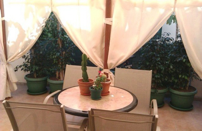 Gemütliche Terrasse mit Pflanzen und Sitzgelegenheit