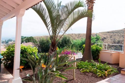 Bepflanzter Außenbereich mit Meerblick