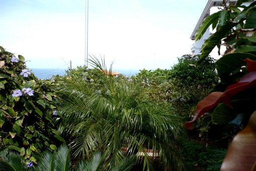 Blick von der Terrasse auf die Berge