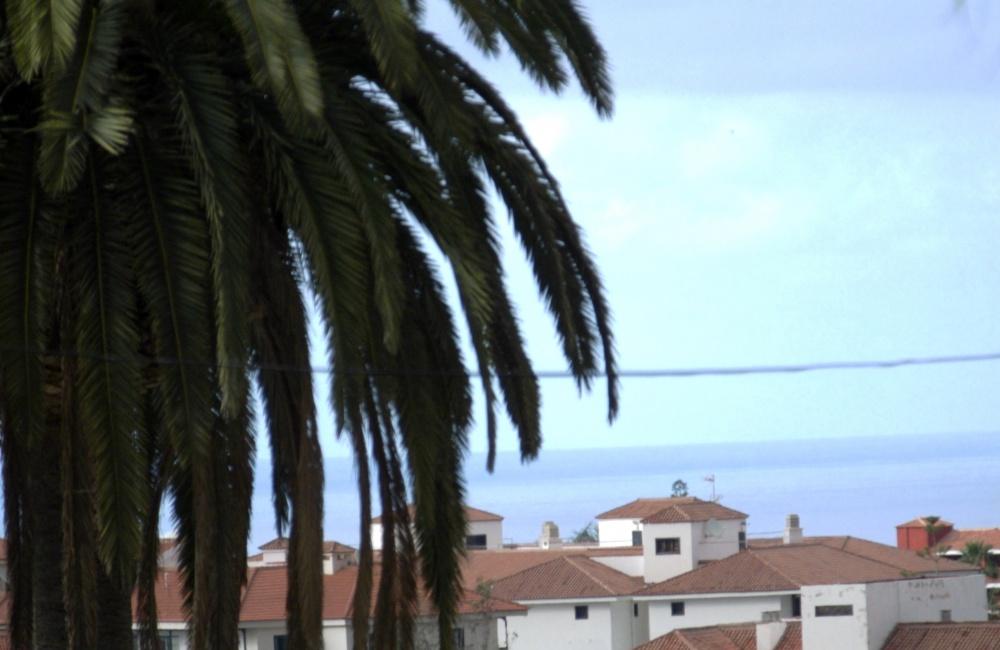 Stilvolle Wohnung in Puerto de la Cruz in einer ruhigen Wohngegend mit Garten und Pool.