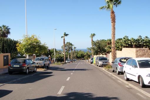 Schöne Palmenallee in der Nähe der Residenz