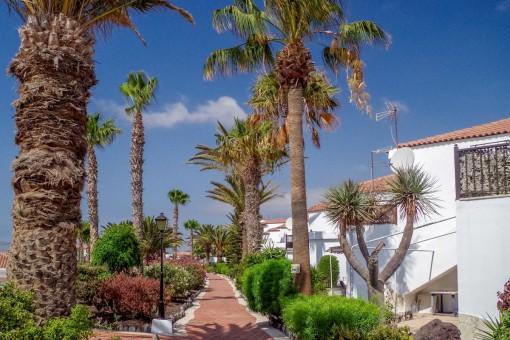 Eine geräumige Erdgeschosswohnung mit 3 Schlafzimmern direkt am Golfplatz in San Miguel de Abona