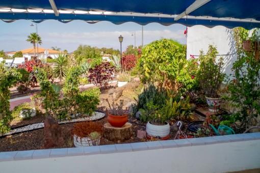 Bepflanzter Teil der Terrasse