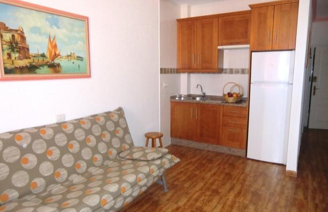 Schönes Wohnzimmer mit Küchenzeile