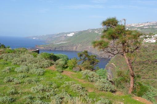 Großes Grundstück mit fantastischem Blick in erster Meereslinie in Santa Ursula