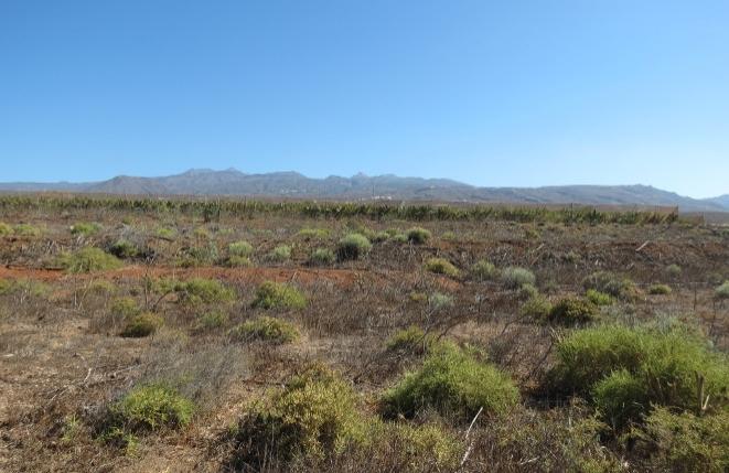 Das Grundstück mit der bergigen Landschaft im Hintergrund