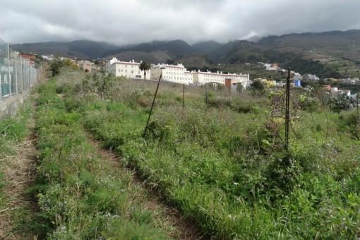 Viel Platz für Garten oder ökologischen Landbau