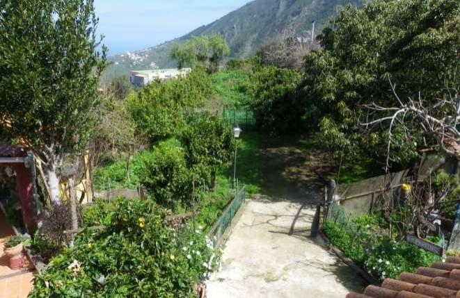 Großer Garten und privater Parkplatz