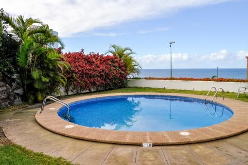 Renovierte Wohnung in Puerto de la Cruz mit einem Schlafzimmer, Meerblick, Terrasse und Pool