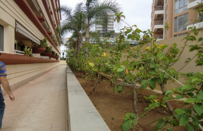 Der Weg zum Eingang des Gebäudes